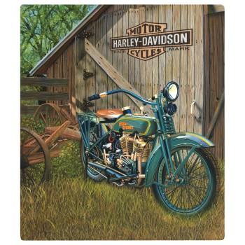 HARLEY DAVIDSON1923 F-HEAD TWIN SIGN