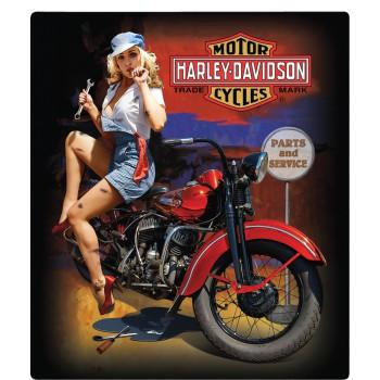 HARLEY DAVIDSON  FIXER UP BABE SIGN