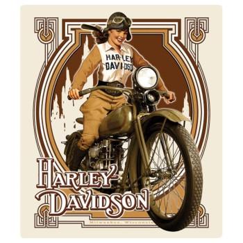 HARLEY DAVIDSON  NOUVEAU BABE SIGN